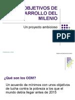 objetivosdedesarrollodelmilenio-110628124839-phpapp02
