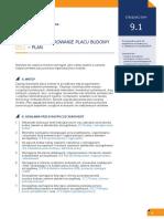 9.1. Zagospodarowanie Placu Budowy - Plan