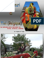 Belgica - Corso fleuri Tiel