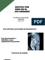 Diagnosticopor Imagenes en El Aparato Urinario