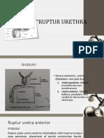 RUPTUR URETRA [Autosaved].pptx