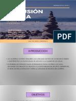 DIAPOSITIVA FINAL DE INTRUSION SALINA WILMER.pptx