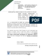 Yngrid Delgado Yparraguirre- Remitir Copias