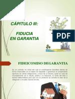 Unidad III Fideicomisos de Garantia (2)