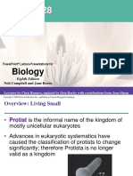 Chapter 28 Protista