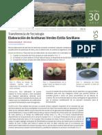 Elaboraciòn de Aceitunas Verdes Estilo Sevillano