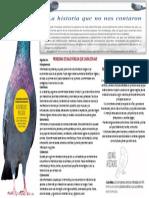 Campaña de concienciación sobre las palomas.pptx