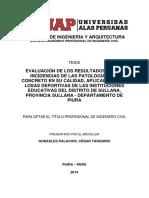 Gonzales Palacios Resumen