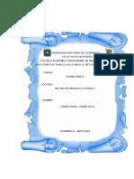Geomecanica Inyecciones de Tuneles Aplicando El Metodo Convencional