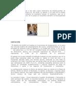 285830847-HUARO-Historia.doc