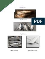 materiales- pesquera