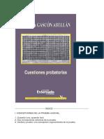 CUESTIONES_PROBATORIAS.docx