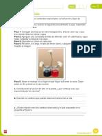 FichaAmpliacionNaturales3U1.doc