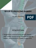 223756122-Penyuluhan-LBP.pptx