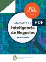 maestria_inteligencia_de_negocios.pdf