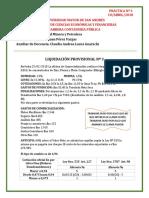 Práctica Nº 3 Liquidación Provisional Zinc