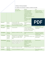 Medicamentos para sistema colinérgico