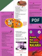 Leaflet Malaria 2011.pdf