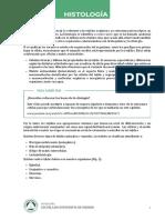 Tipos de tejidos.pdf