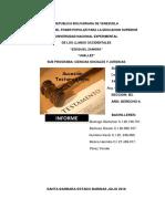 Informe de Romano. Modulo v. Grupo 3