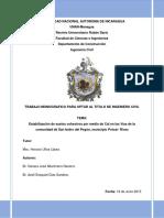 51667.pdf