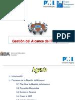 G. Alcance DDPXV -Luis Mateo.pdf