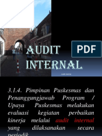 Audit Internal1