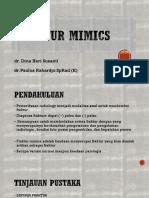 Fracture Mimics