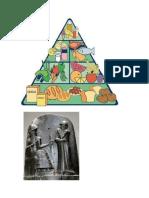 Piramide Nutricional Tarea Perfam
