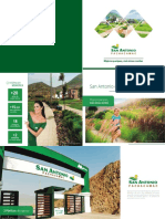 Ejemplo de Brochure