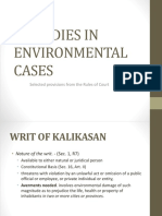 Remedies in Environmental Cases