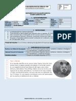 INSTRUMENTO DE EVALUACIÓN QUIMESTRAL 2-7 NEE.docx