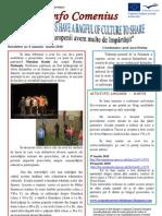 Newsletter 4