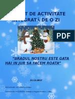 0_proiect_pentru_inspectia_special_grad_ii_raluca_13.12.2013.doc