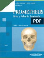 Neuroanatomia Prometheus