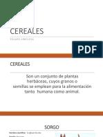 Cereal Es