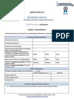 BRONCE Plantilla Informe Anual 2018.docx