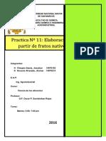 Informe 11 Nectar