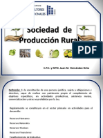 951 Sociedad de Produccion Rural