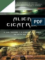Alien Cicatrix II
