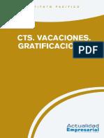 CTS,Vacaciones y Gratificaciones