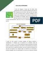 73803722-CICLOS-BIOGEOQUIMICOS.pdf