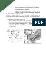 9na y 10ma Clase Yacimientos Metalicos 2013-I