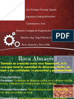 Geologia Roca Almacen y Sello Caracteris