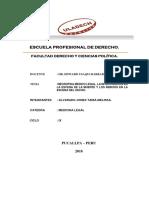 Resumen Negropsia Medico Legal
