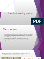 Metabolismodeprotenas 150708030559 Lva1 App6891