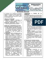 14. Nutricion Celular.docx