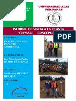 Informe de Visita Cepasc Cambiar Hoja