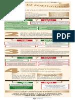 Infografico Cidadania Filhos Portugueses RevisC3A3o2(1)
