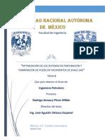 """Perfor y termin de SHALE GAS"""".pdf"""